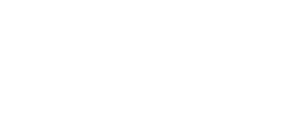 stripe brand logo in white